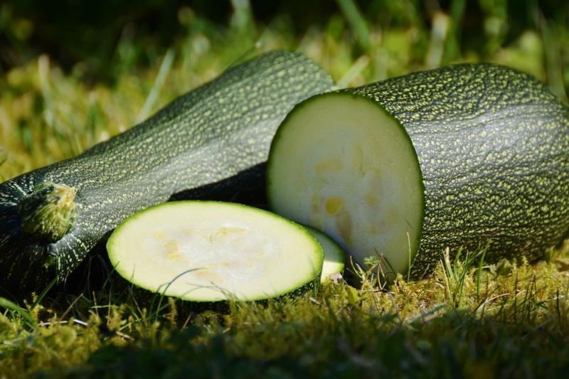 zucchini-1659094_1920 (800x533).jpg