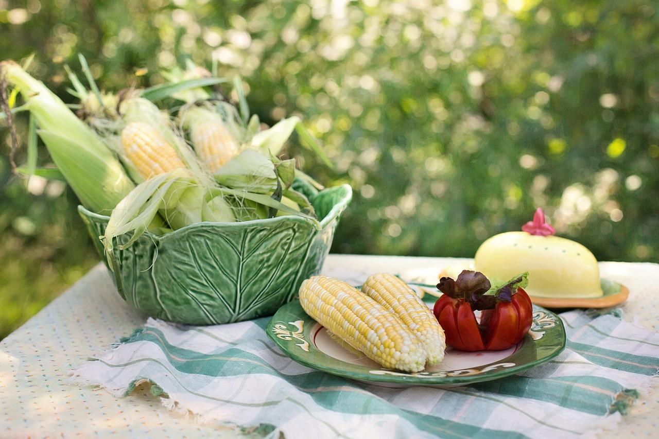 corn-929235_1280.jpg