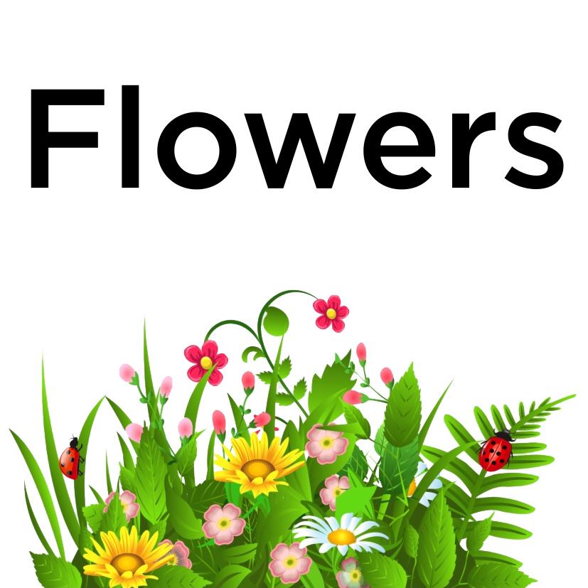 flowers-icon.jpg