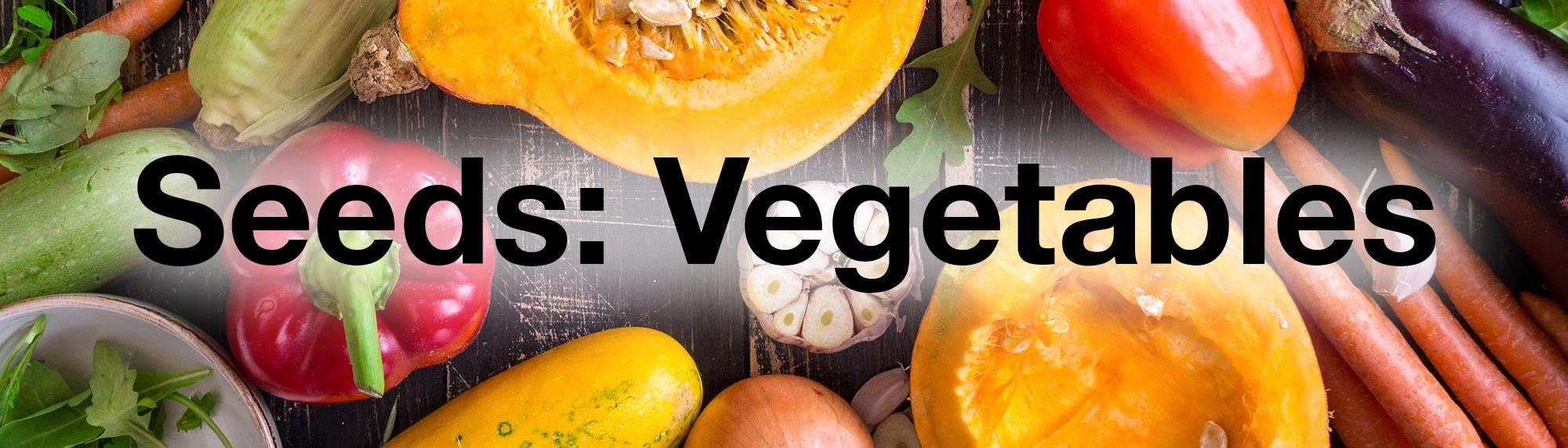 vegetables-banner.jpg