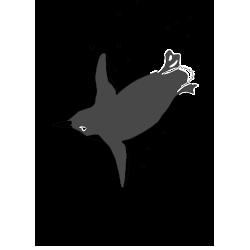 ipc2-logo.png