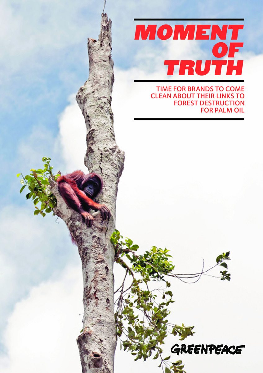 Greenpeace article image.jpg
