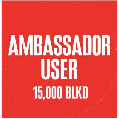 Ambassador copy.png