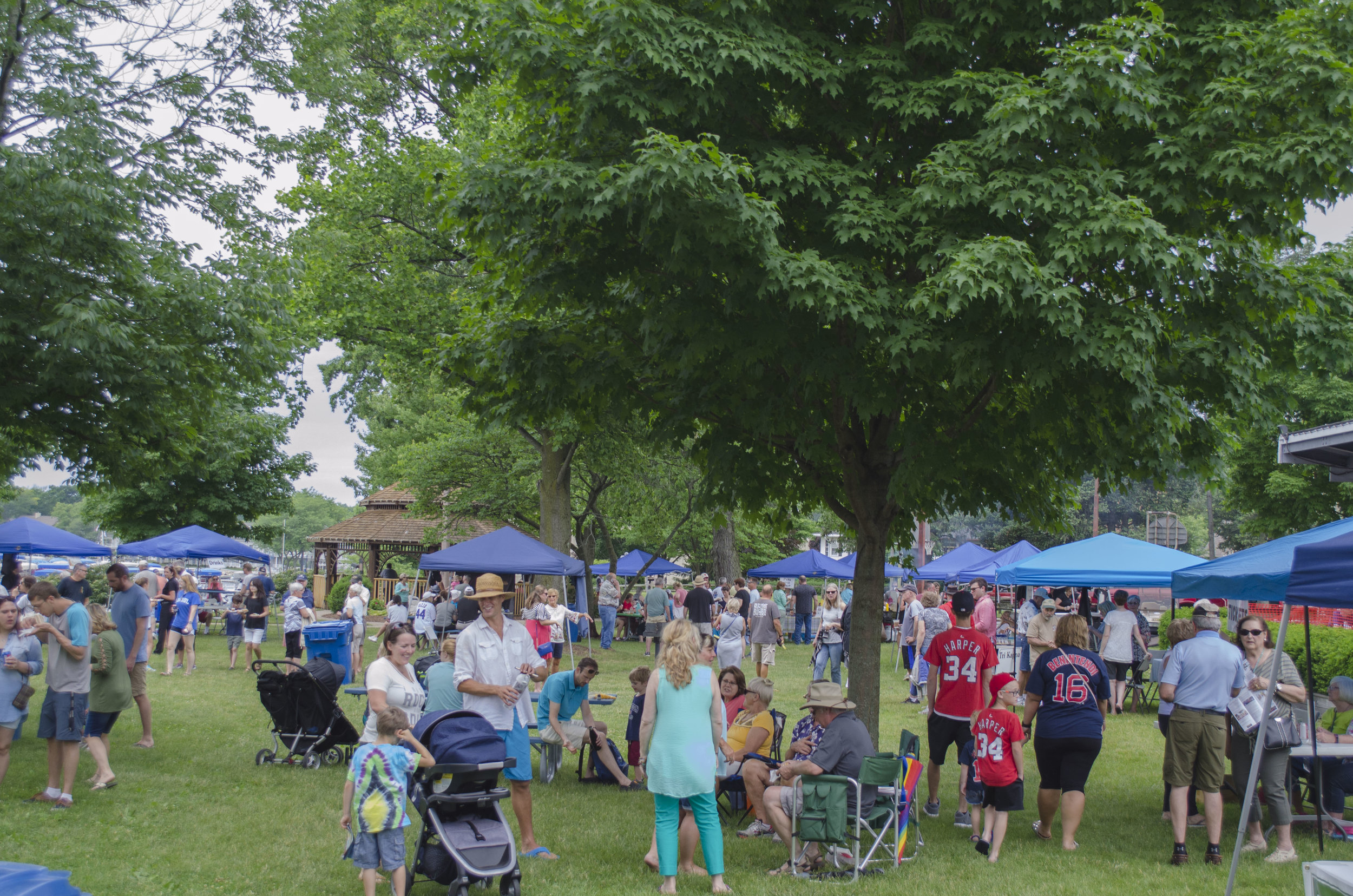 Attendees gather in the town park Saturday, June 9 for Taste of Culver. Local businesses and restaurants had booths set up with food and drinks.
