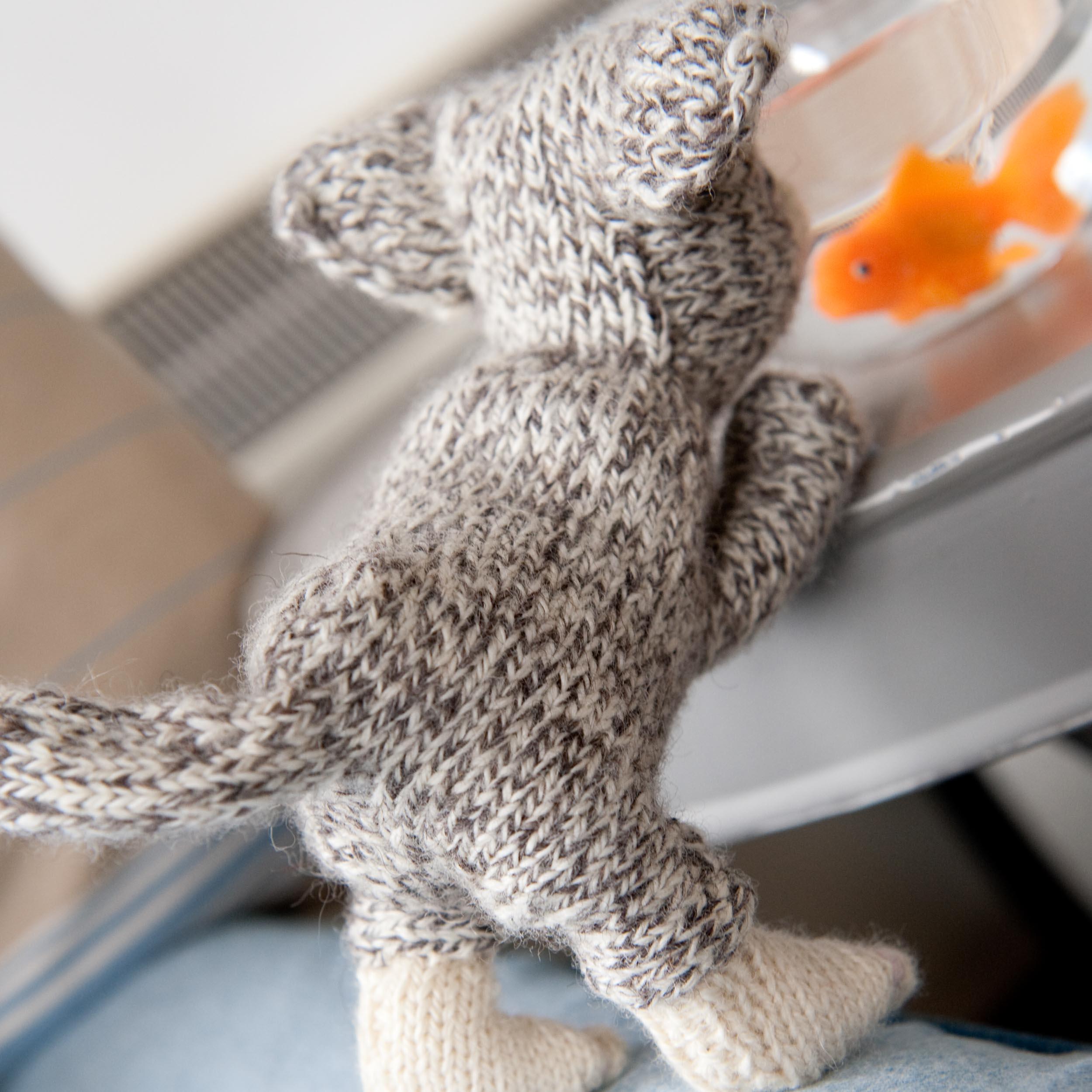 knit-pets-071.jpg