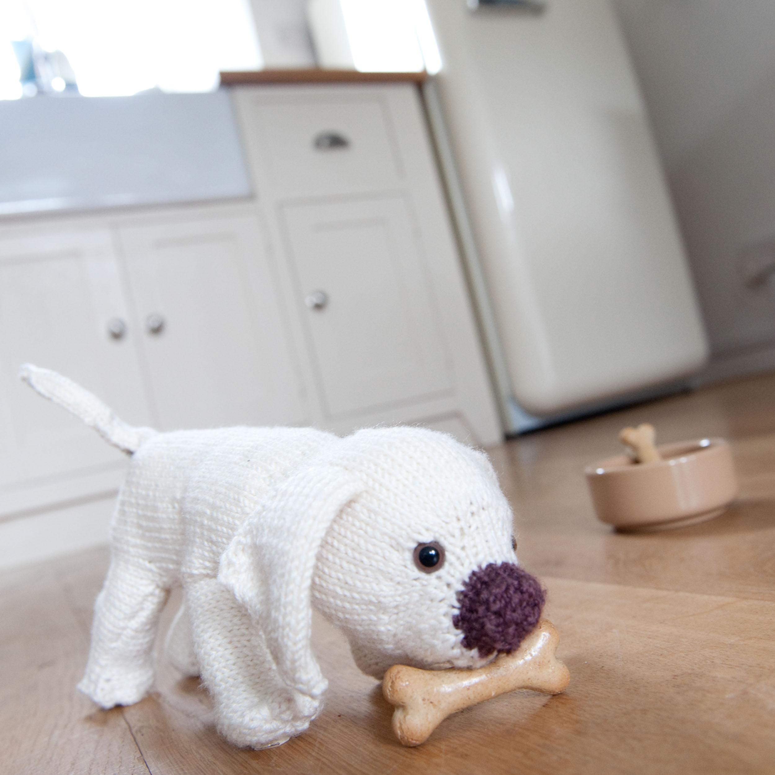 knit-pets-108.jpg