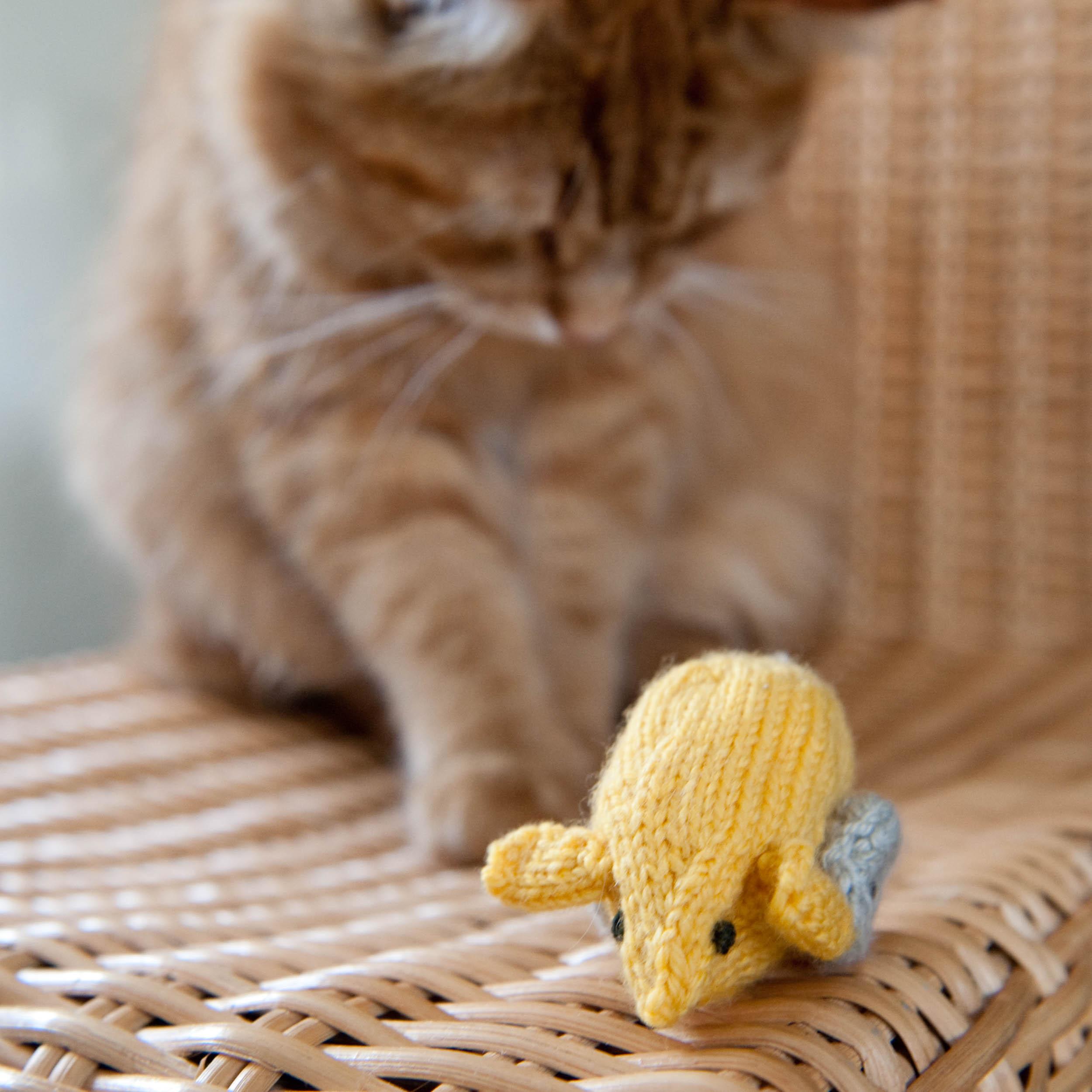 knit-pets-145.jpg