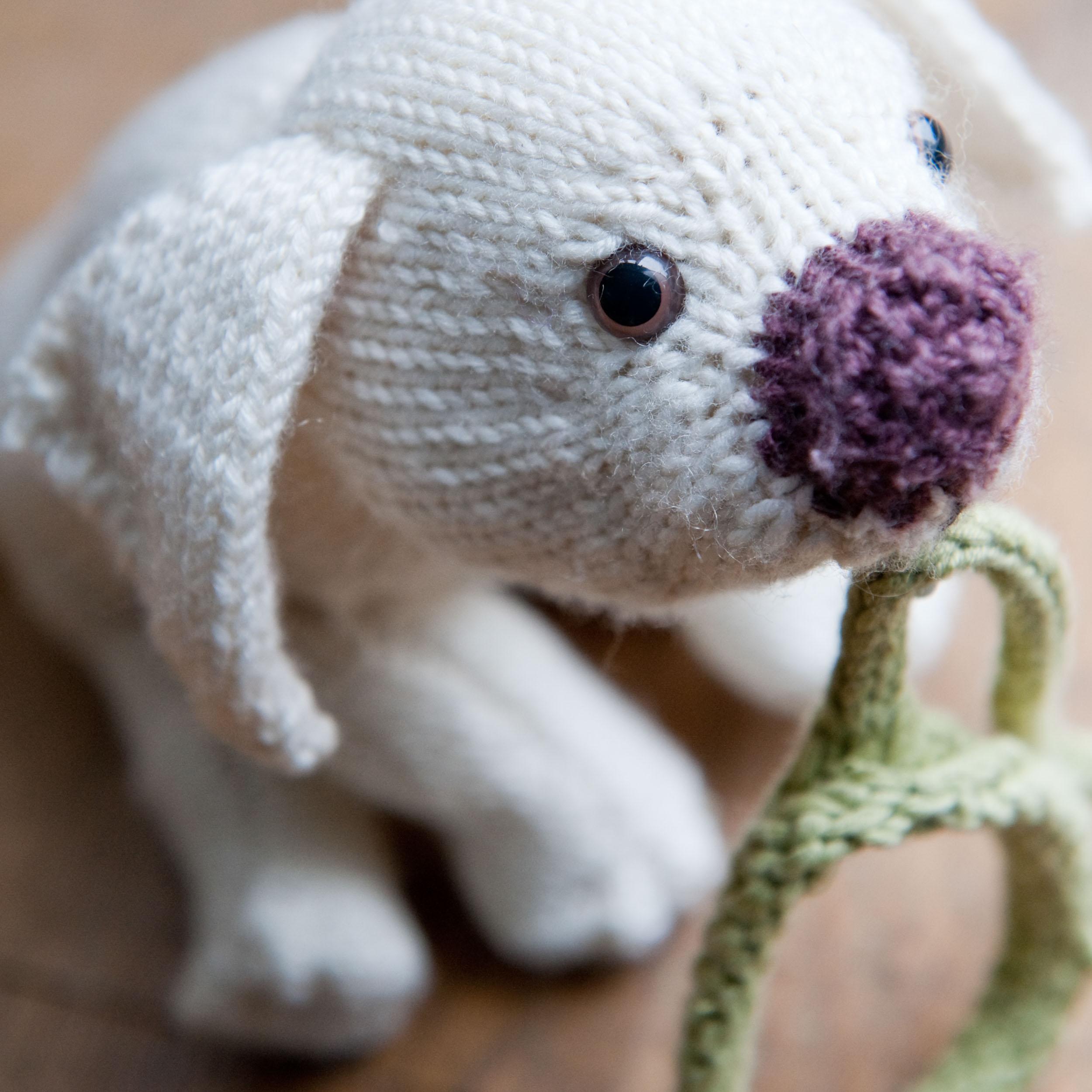knit-pets-170.jpg