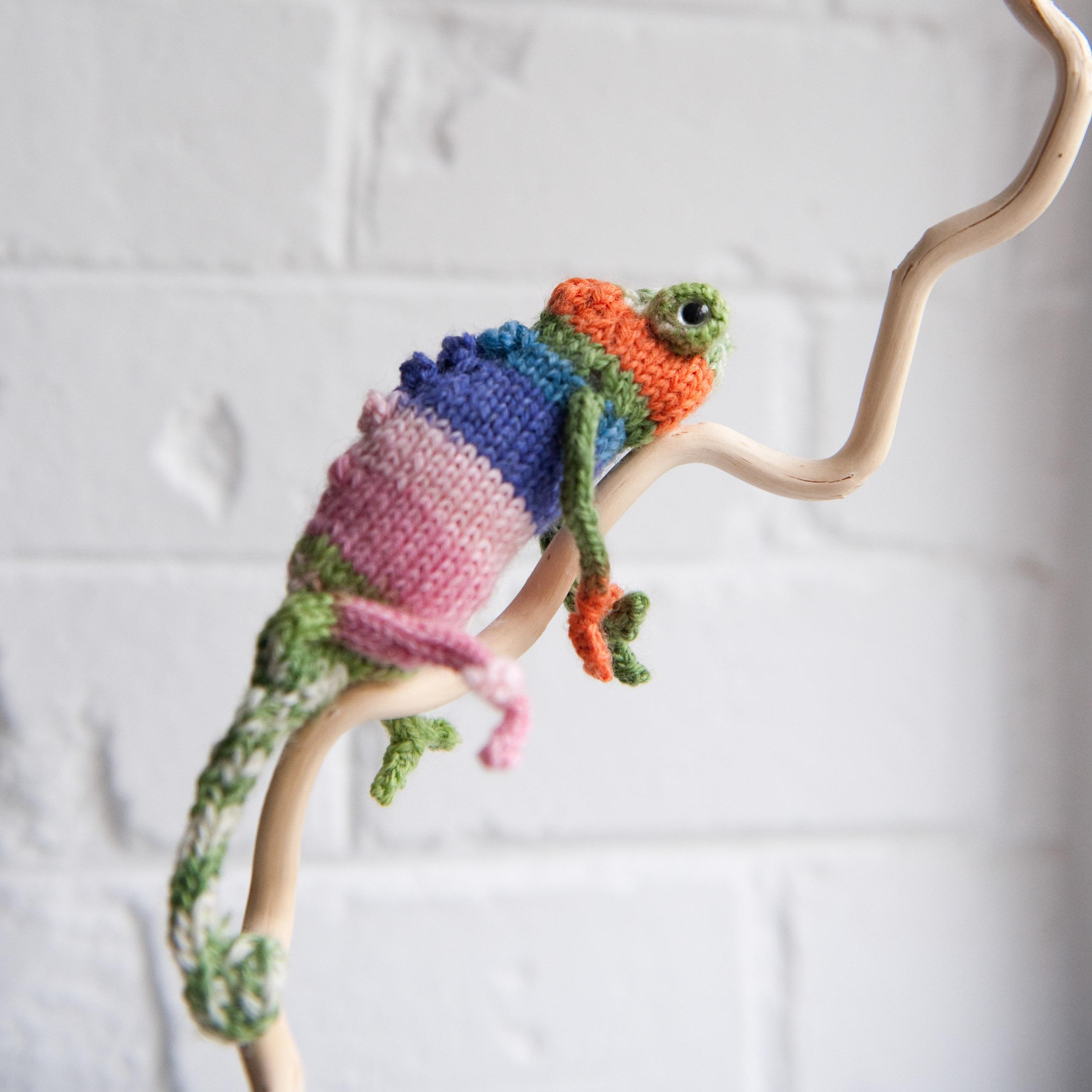 knit-pets-178.jpg