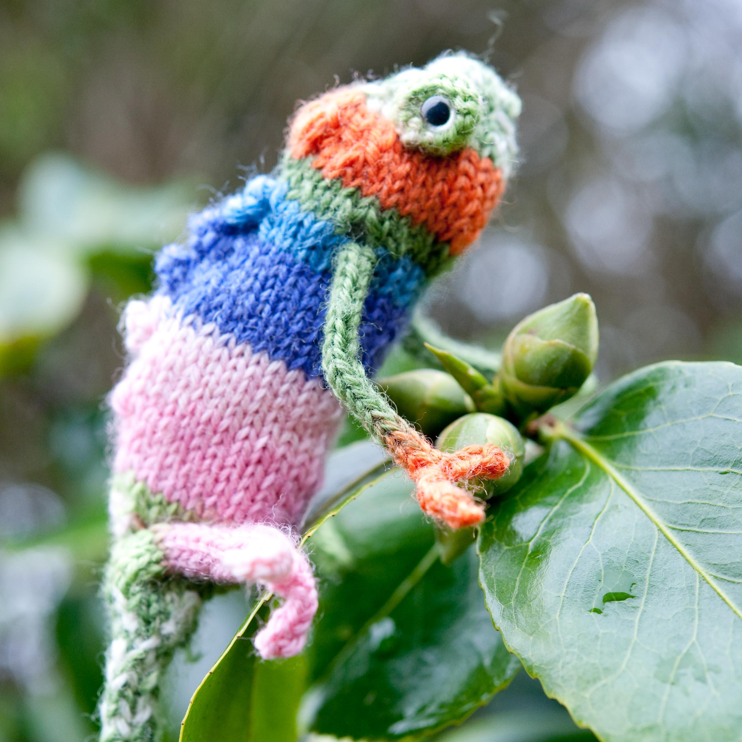 knit-pets-215.jpg