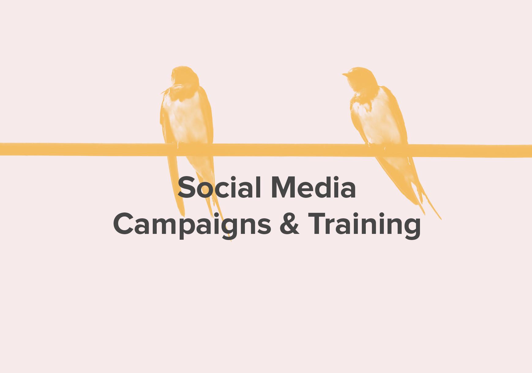 Social Media (Yellow-White).jpg