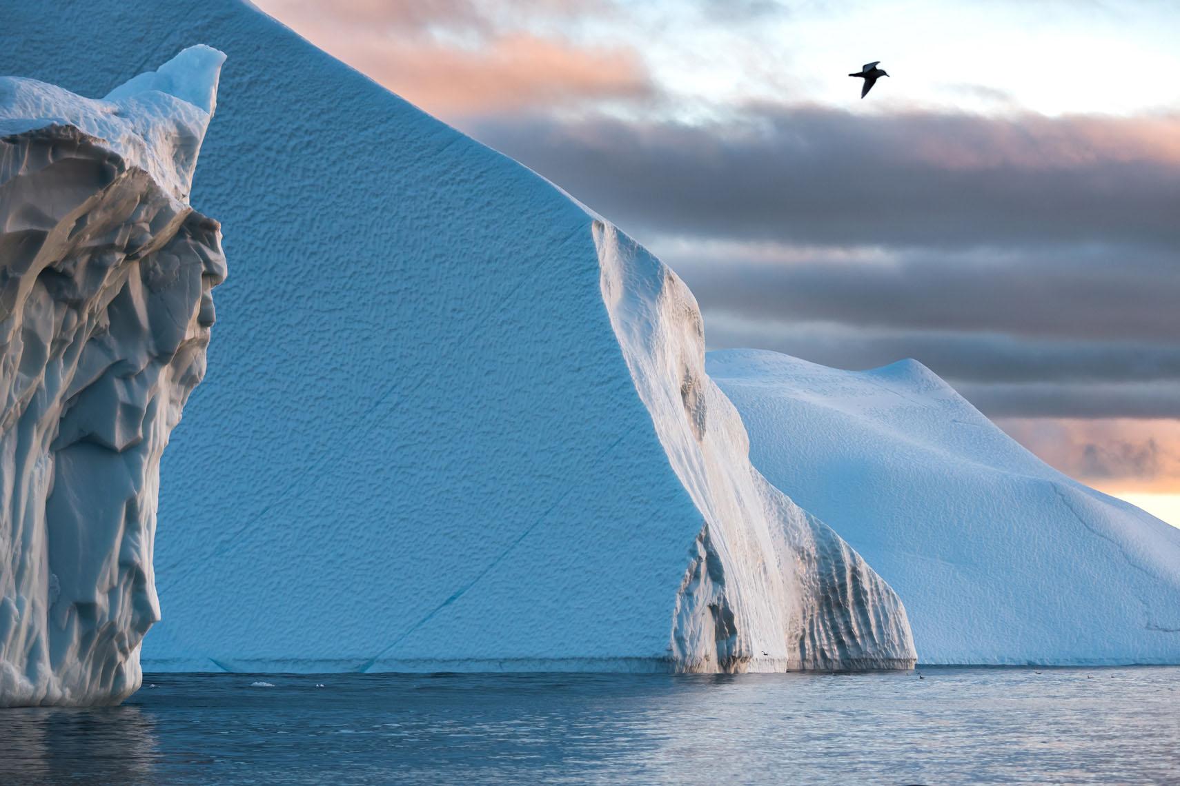 Frozen North -