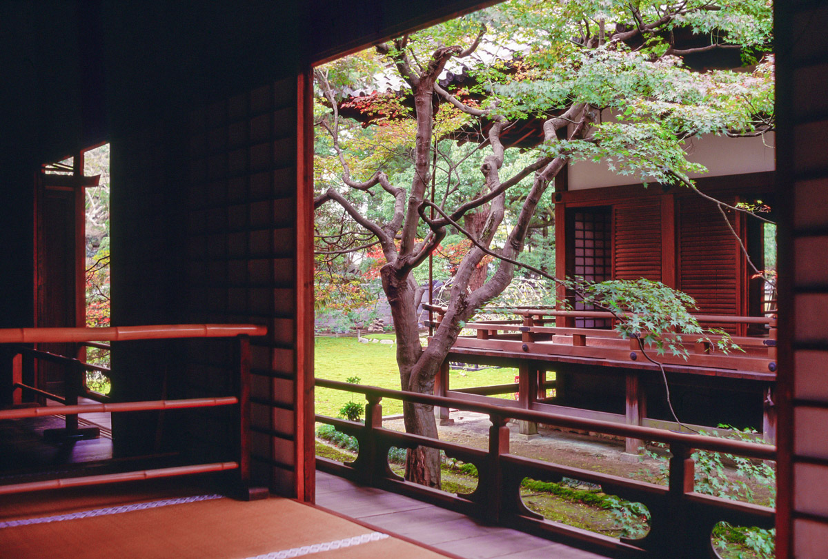 """Follow me, Follow you    """"Wandering down a hidden ginnel in the heart of Gion, Kyoto's revered geisha district, my head is still spinning from daily doses of a samurai soap opera I have become mildly obsessed with ..............""""    Download a PDF"""