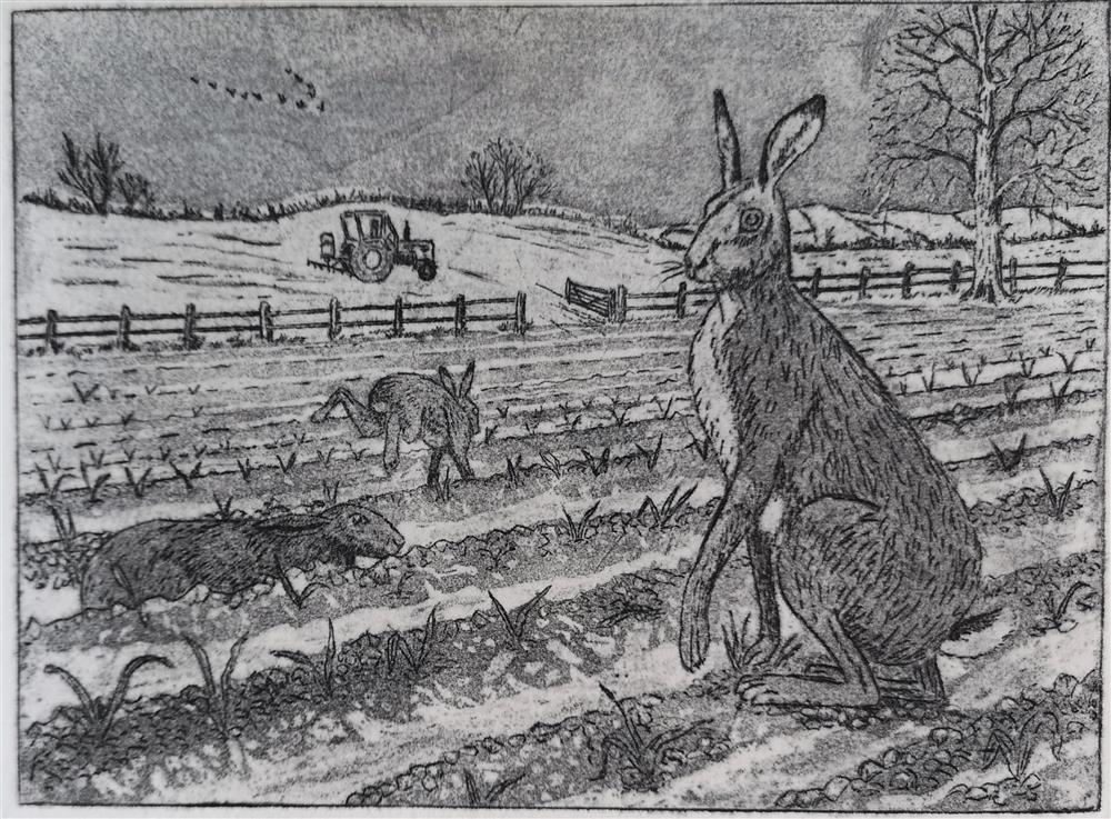 4.Hares Marie South (Custom).jpeg