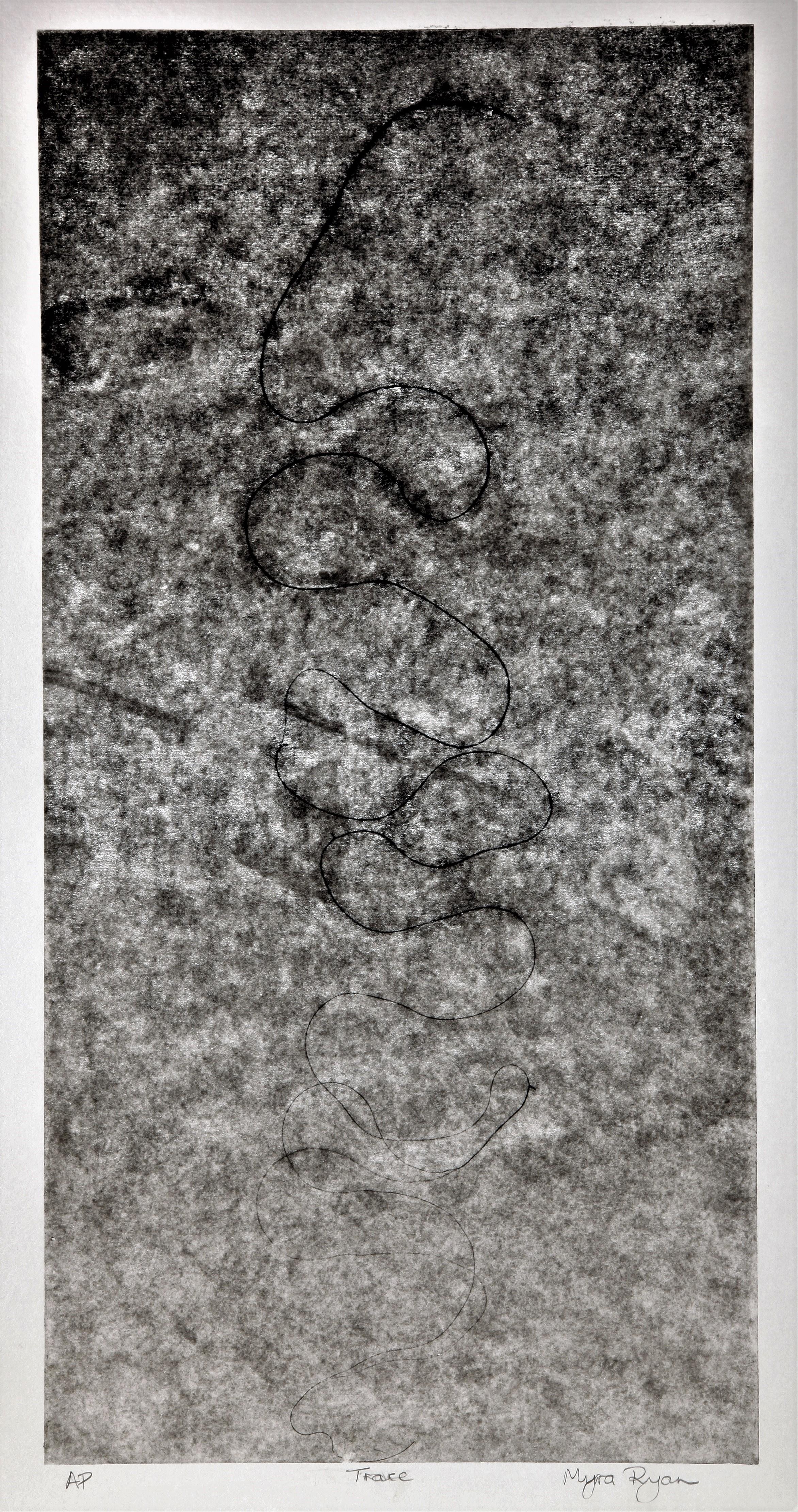 3. Trace ll                     Screen print            AP    VE of 3              Framed  63x80        Unframed  42x60.jpg