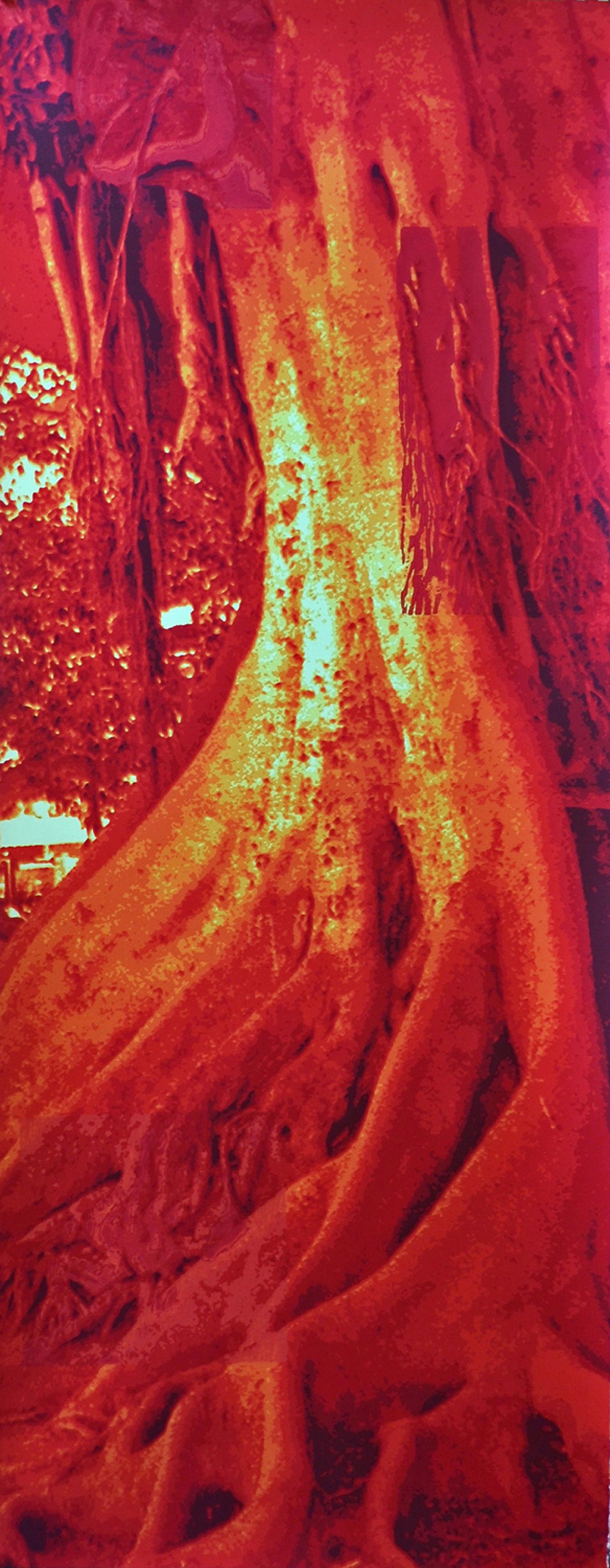 Teri Walsh - Art Work 1 -Trees & Roots IV.jpg