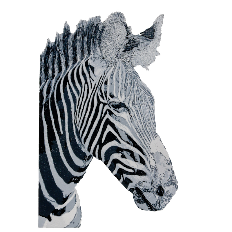 4. Zebra.jpg