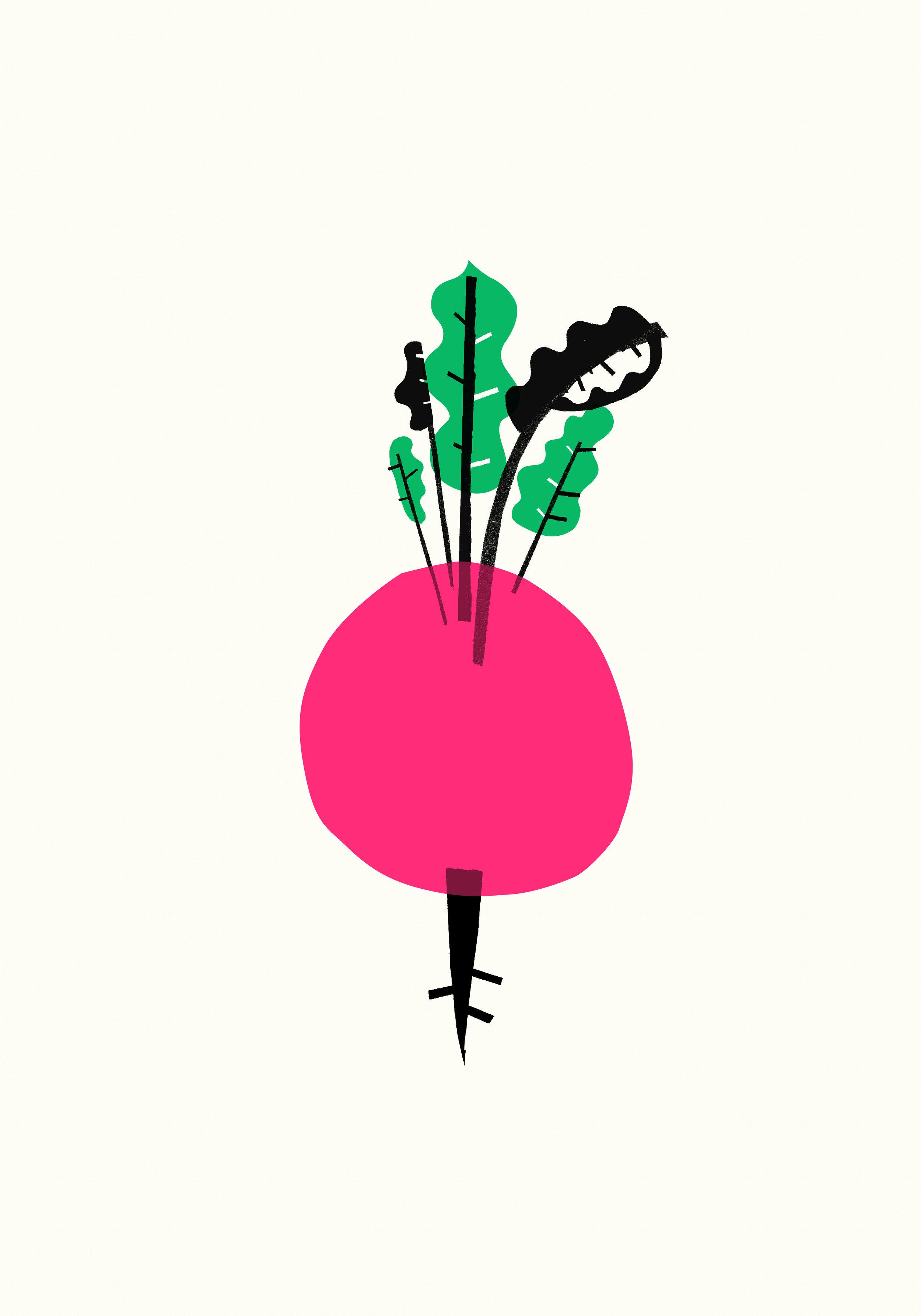 1. LucyHowarth-ArtWork1-BIGBEET.jpg