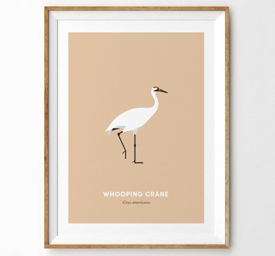 WhoopingCrane-wooden-frame-1200-v2.jpg