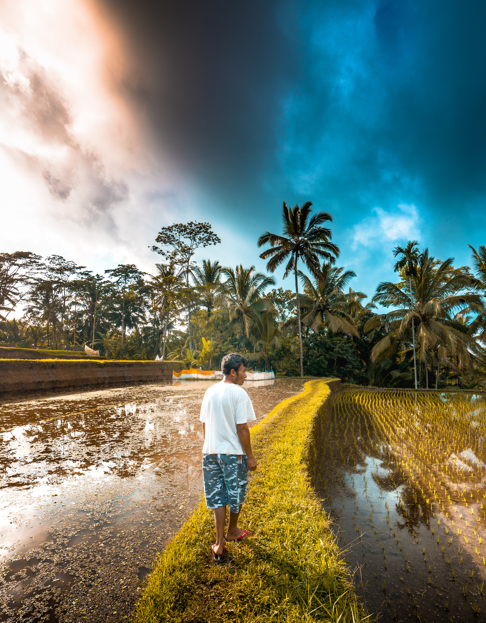 Rice Terrace with private guide - insta 2.jpg