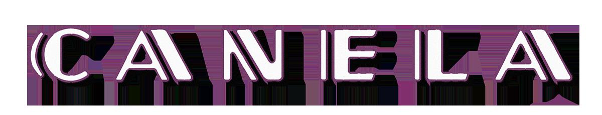 Canela_Logo Glass NOISE Smaller 2.png