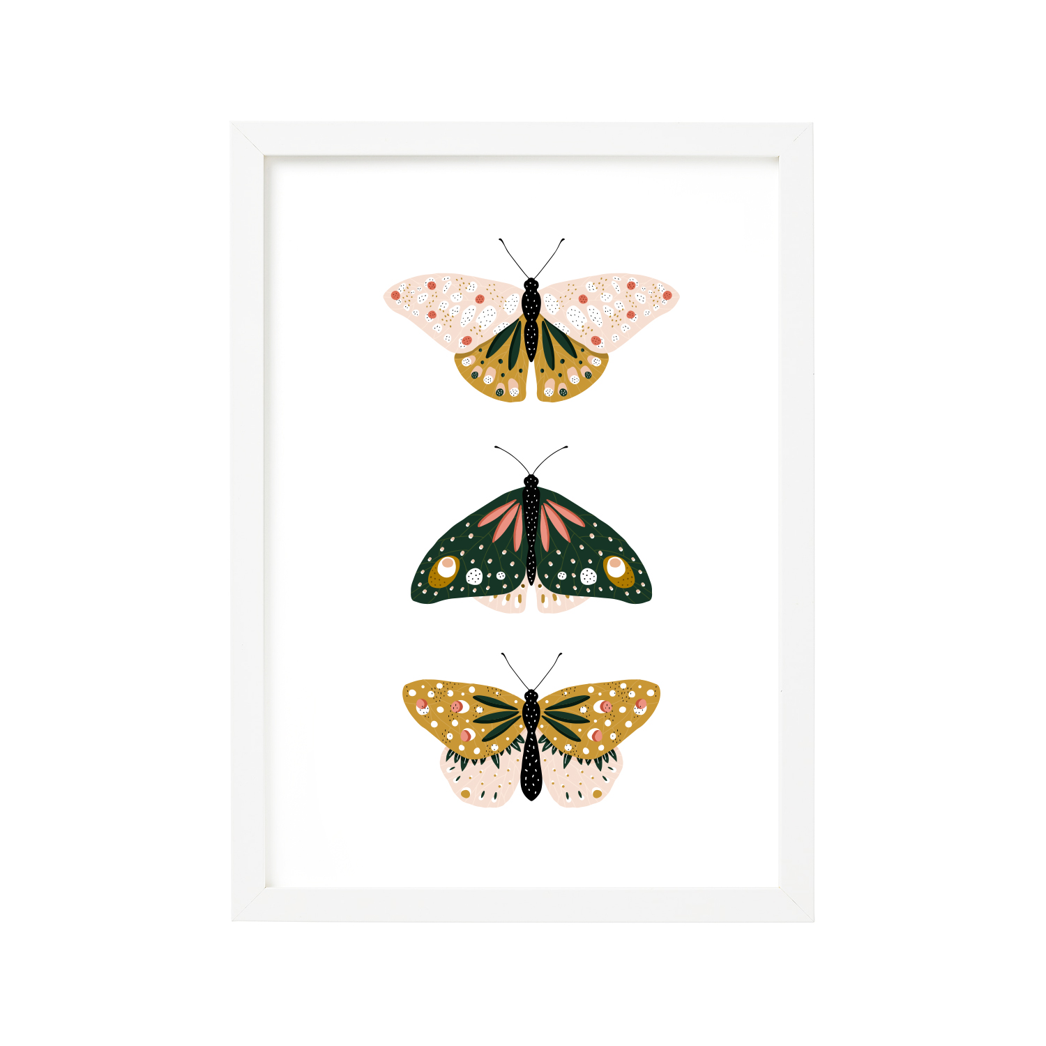 butterfly-classification-print-by-maggie-molloy.jpg