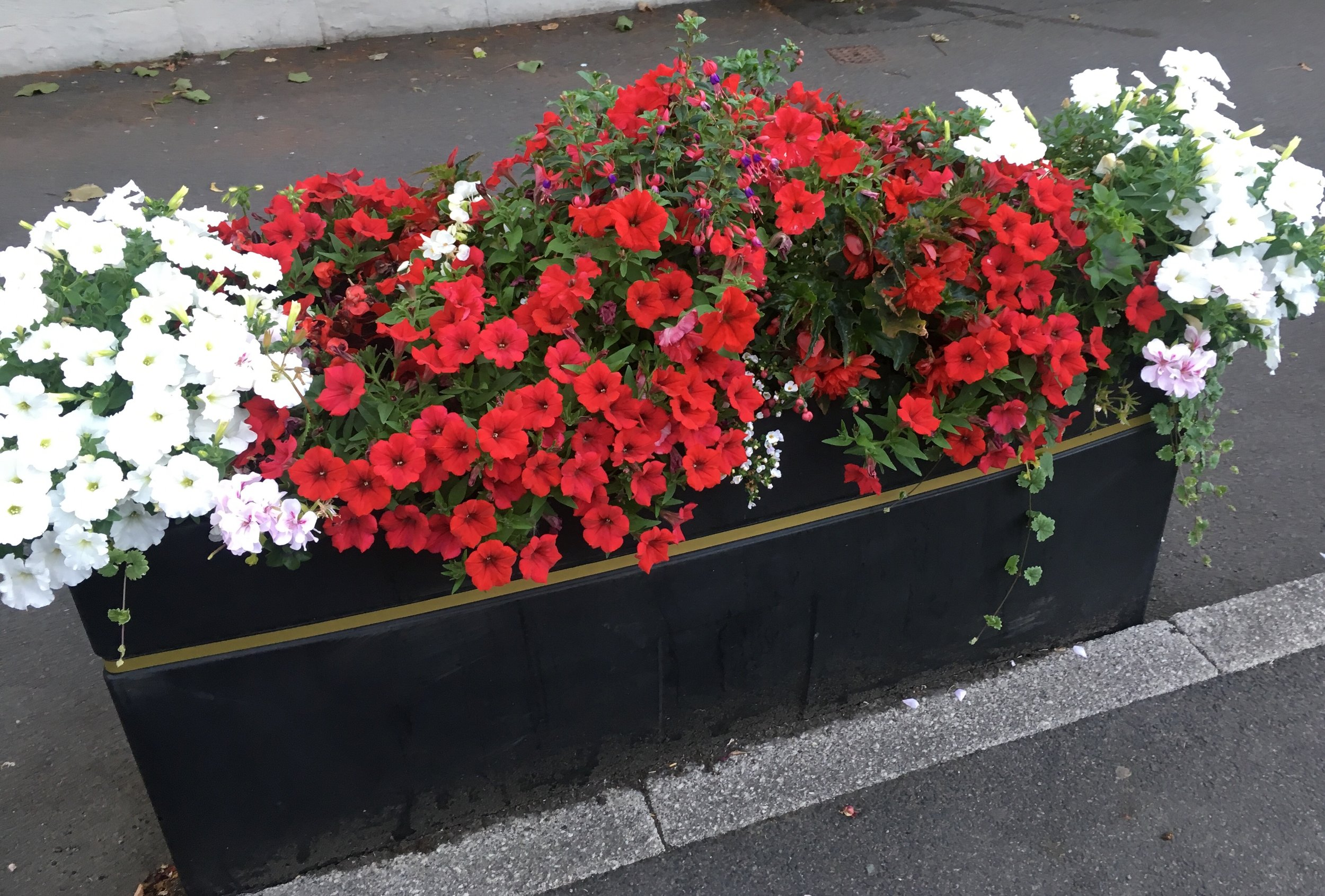 High Street Promenade Planter