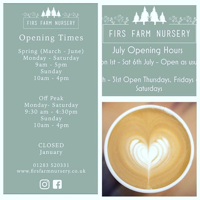 July already - can't believe it's the last day of June. Please note that the nursery and Pippins  is open as normal until next Saturday evening. From Sunday for the rest of July we and the nursery will be open on Thursday Friday and Saturdays only.  Back to normal from August 1st. see you soon.