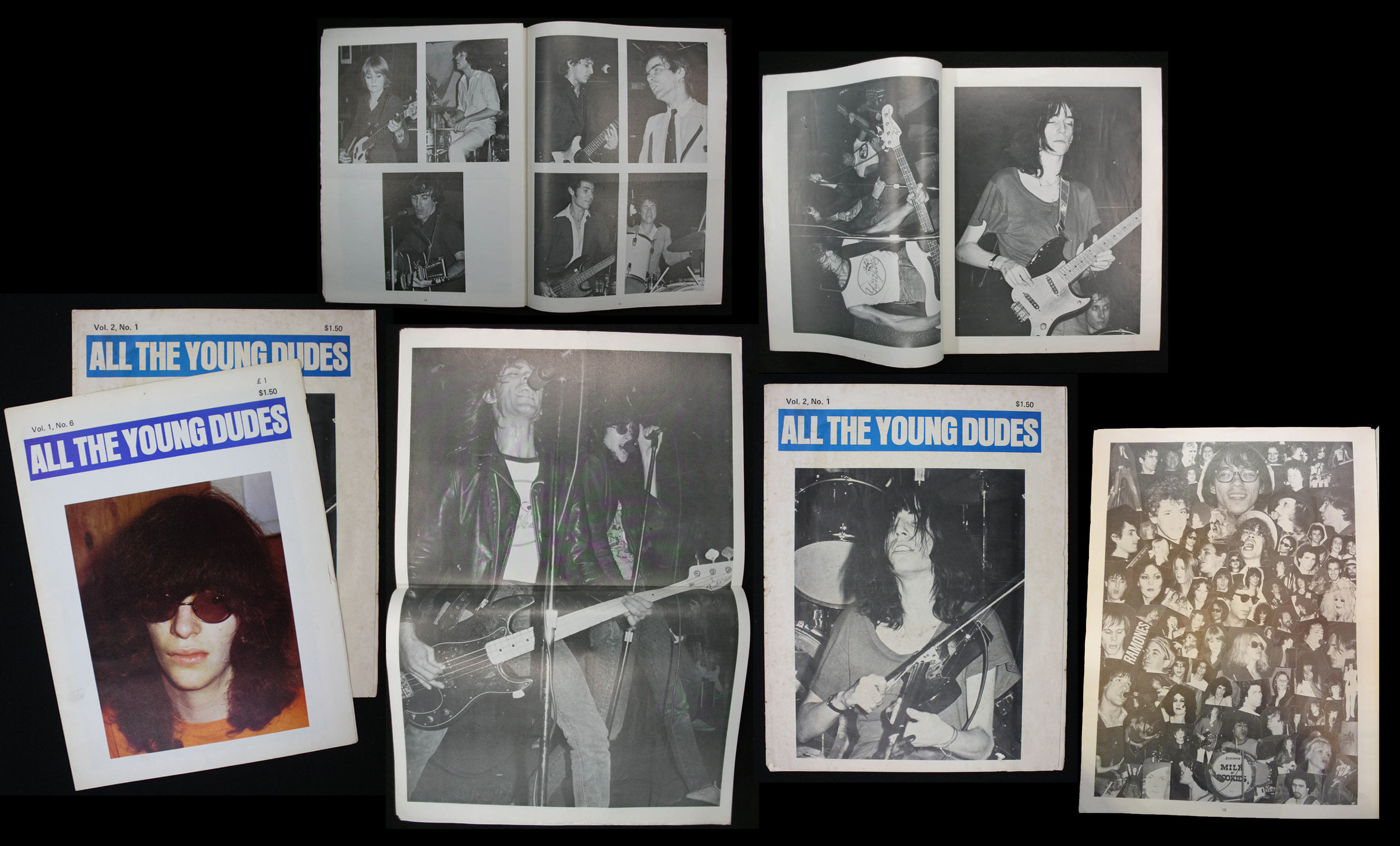 All_The_Young_Dudes_Collage.jpg