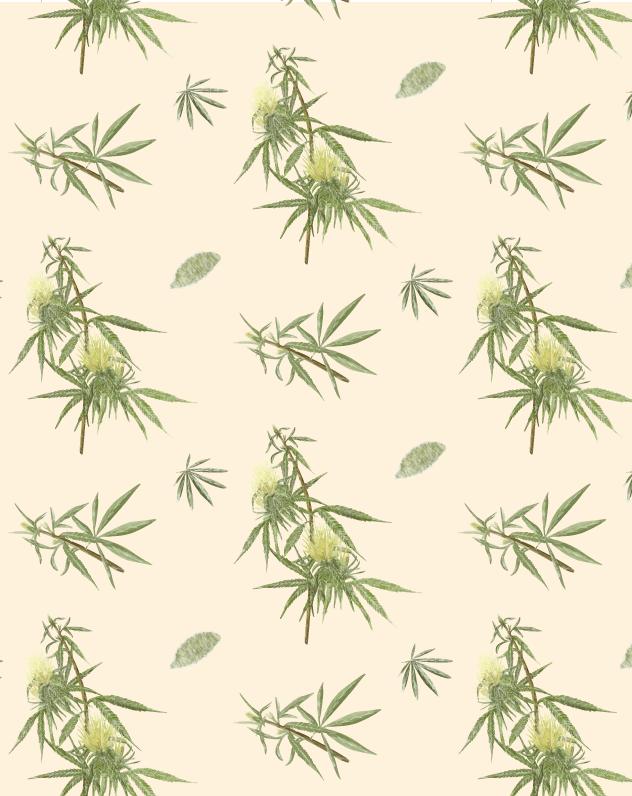 botanist-pattern.png