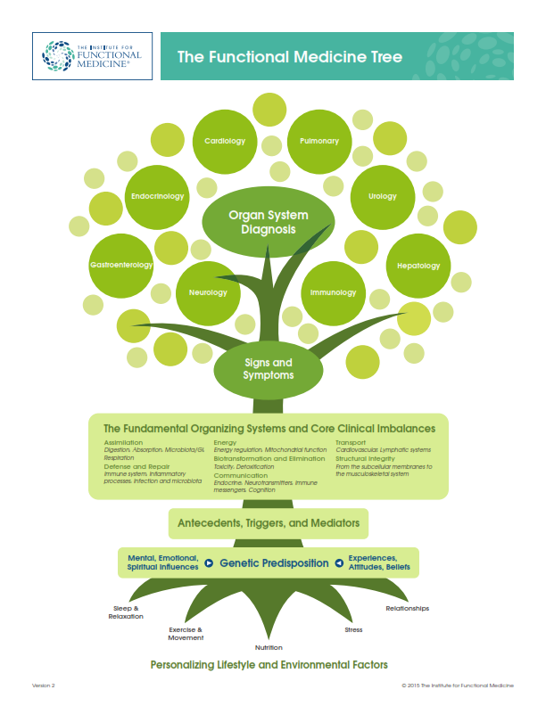 The Functional Medicine Tree (Click to Zoom)