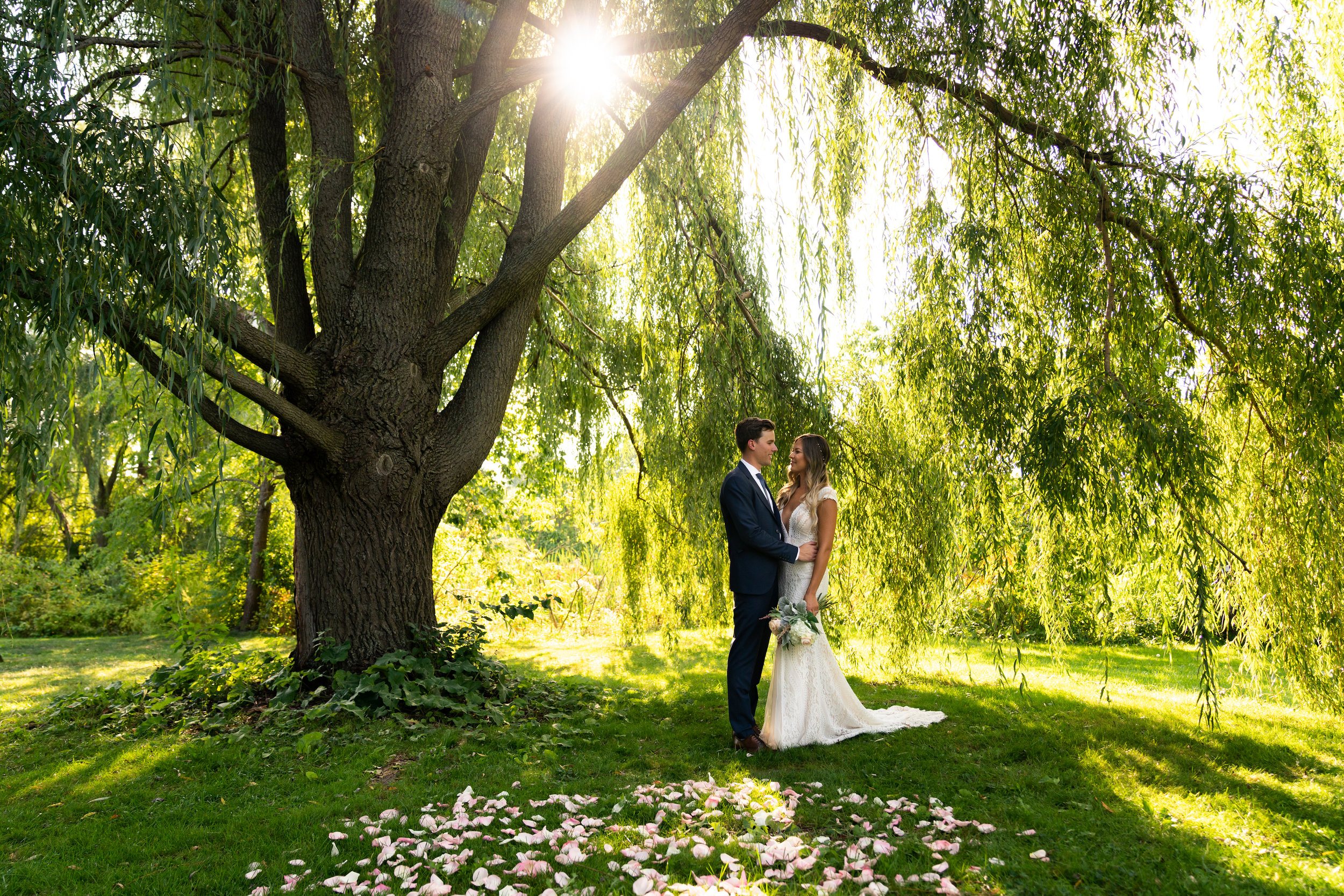 The Willow trees make the light fall in absolutely beautifully and also creates quite the backdrop. My classic light flare shining through the branches.