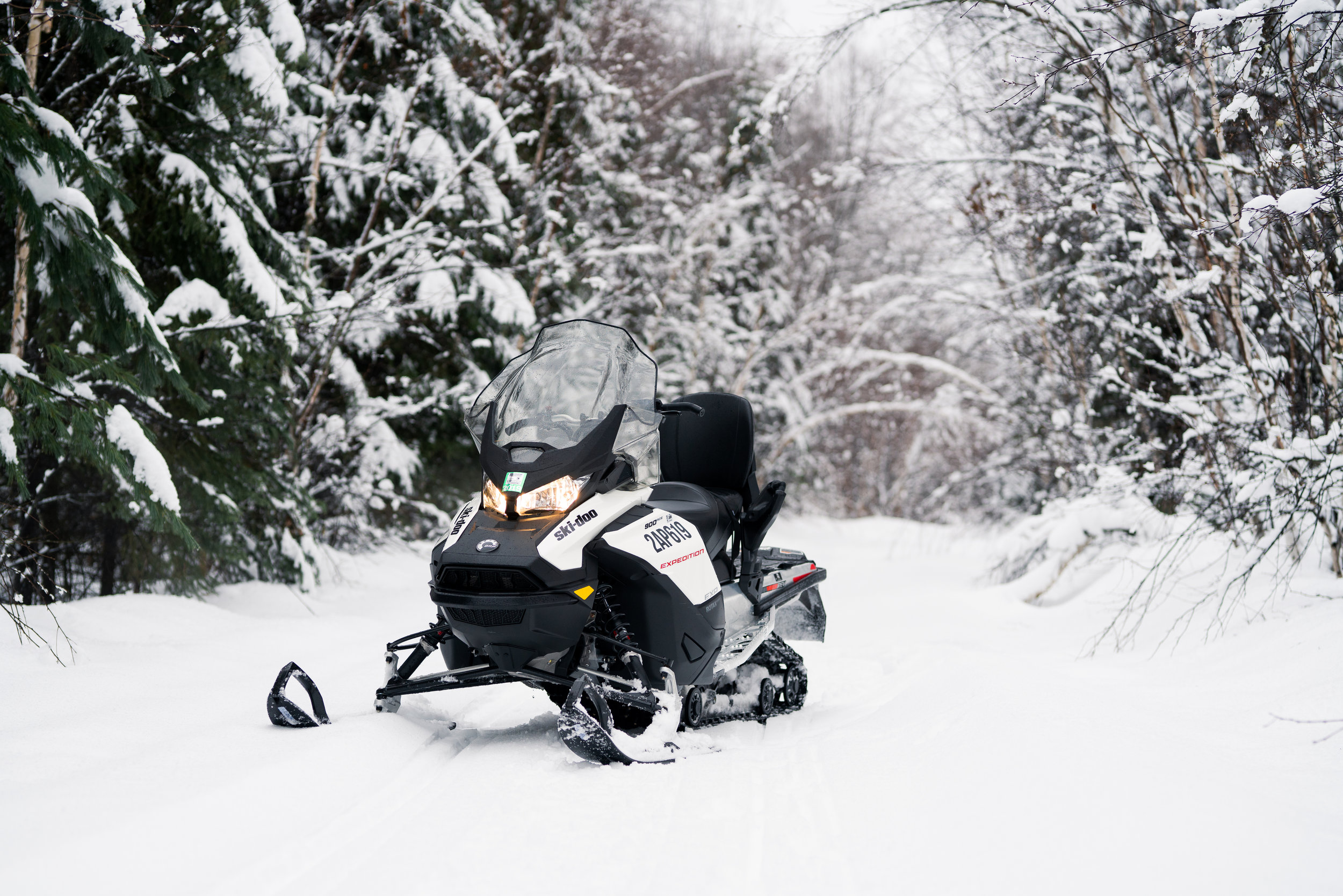 Ski Doo Expedition Sport Rev 4. It was almost too easy to do wheelies on this thing.