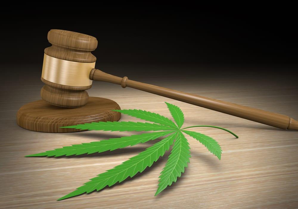 cannabis-gavel-1.jpg