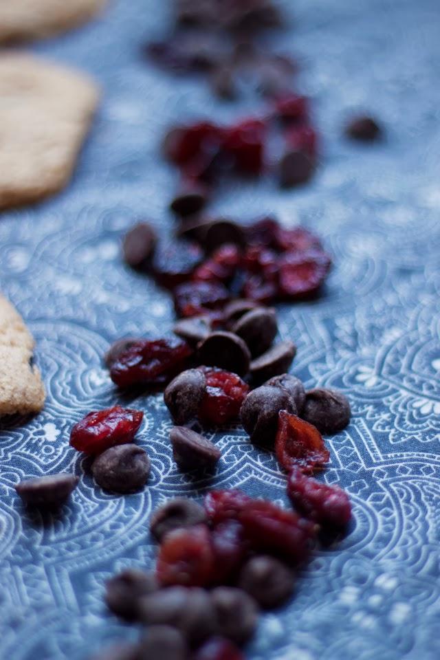 Cranberrygingercookies_12.4.13.1.web_.jpg