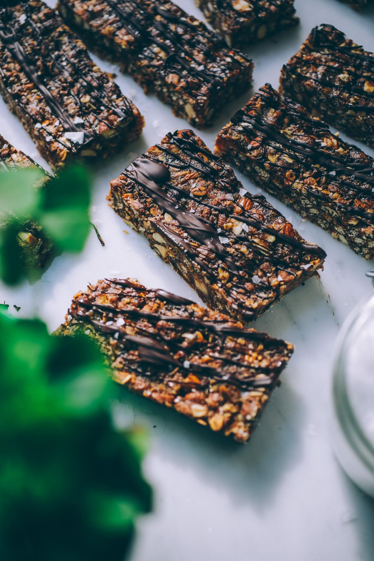 chocolate-peanut-butter-granola-bars-4701.jpg