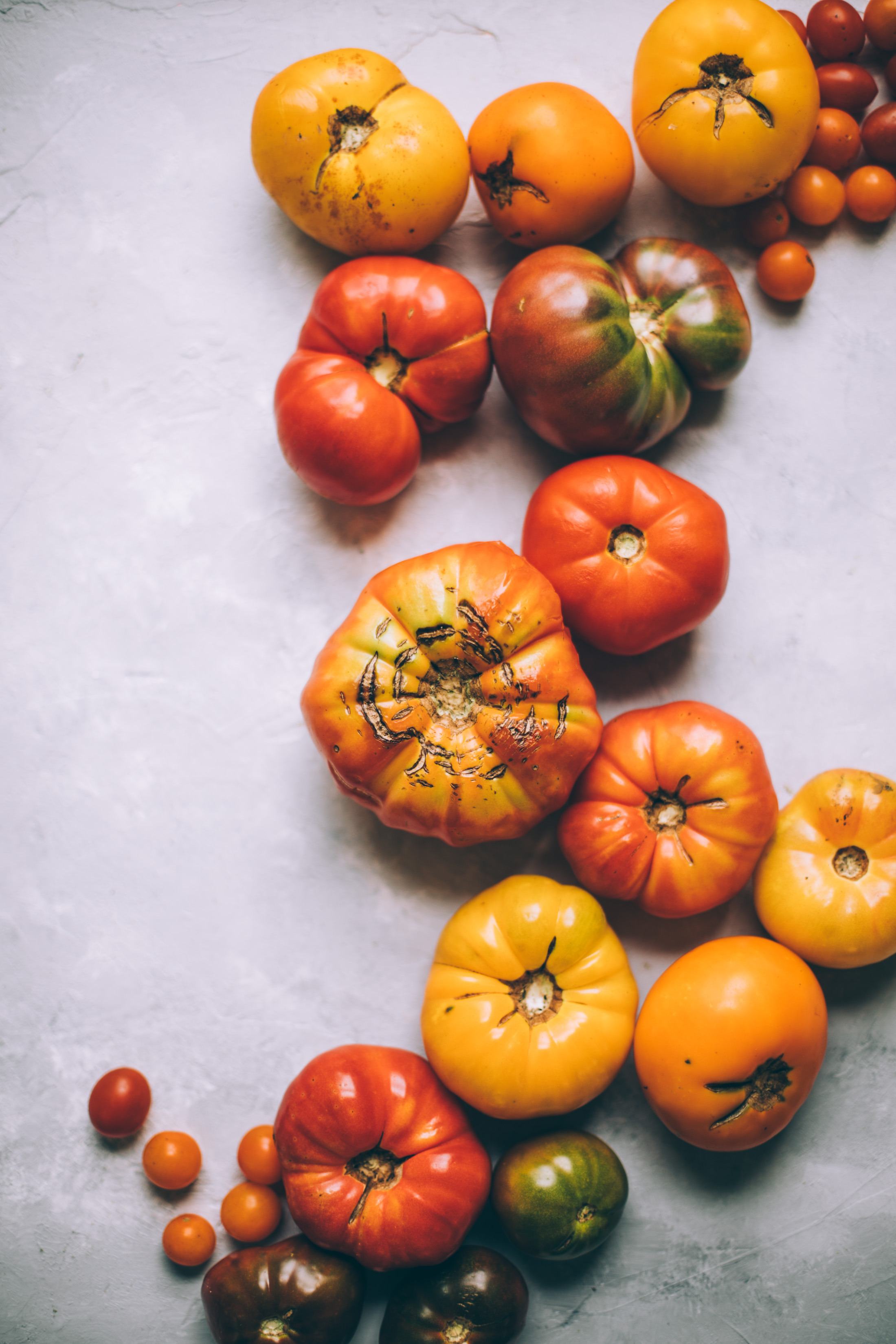 rustic grain free tomato galette with almond ricotta | dairy free savory tart, paleo dinner recipe | will frolic for food