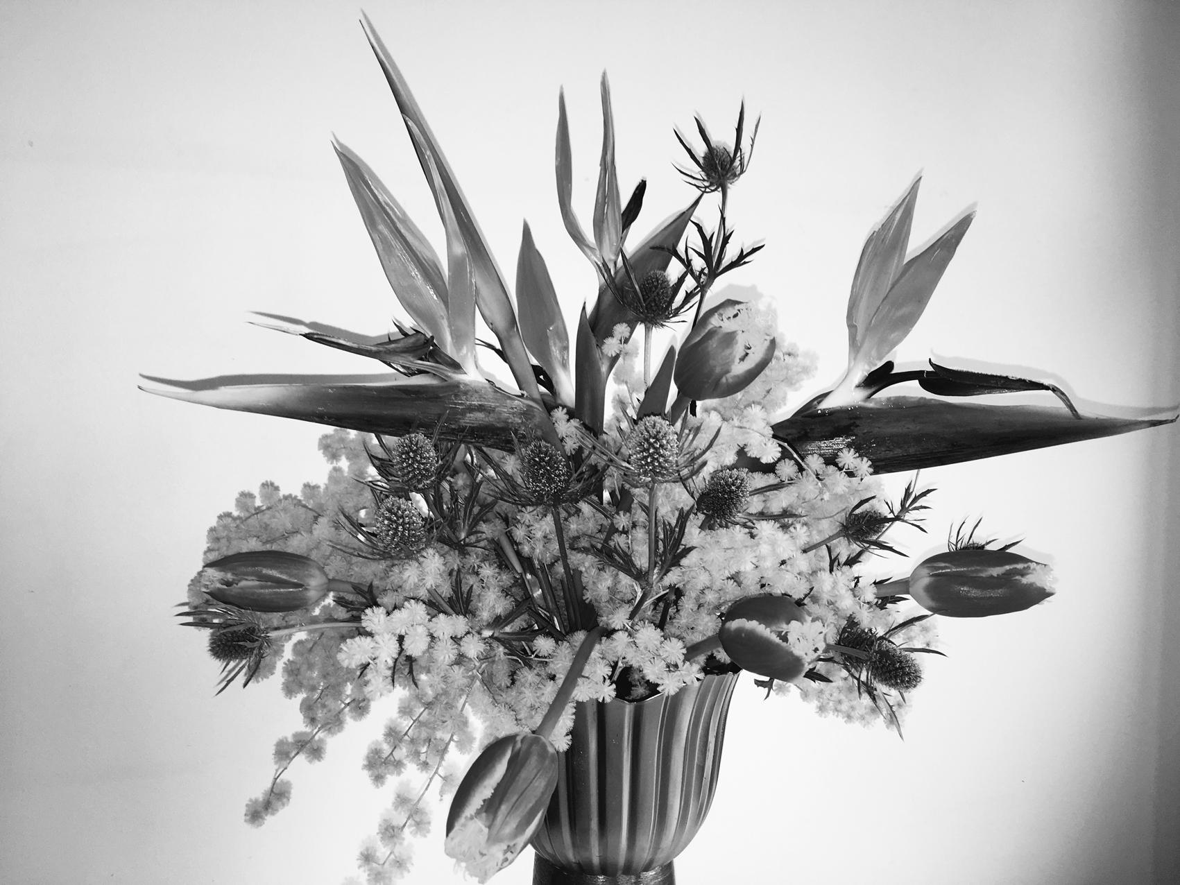 Obra de la muestra Arte floral de Bárbara Piffre