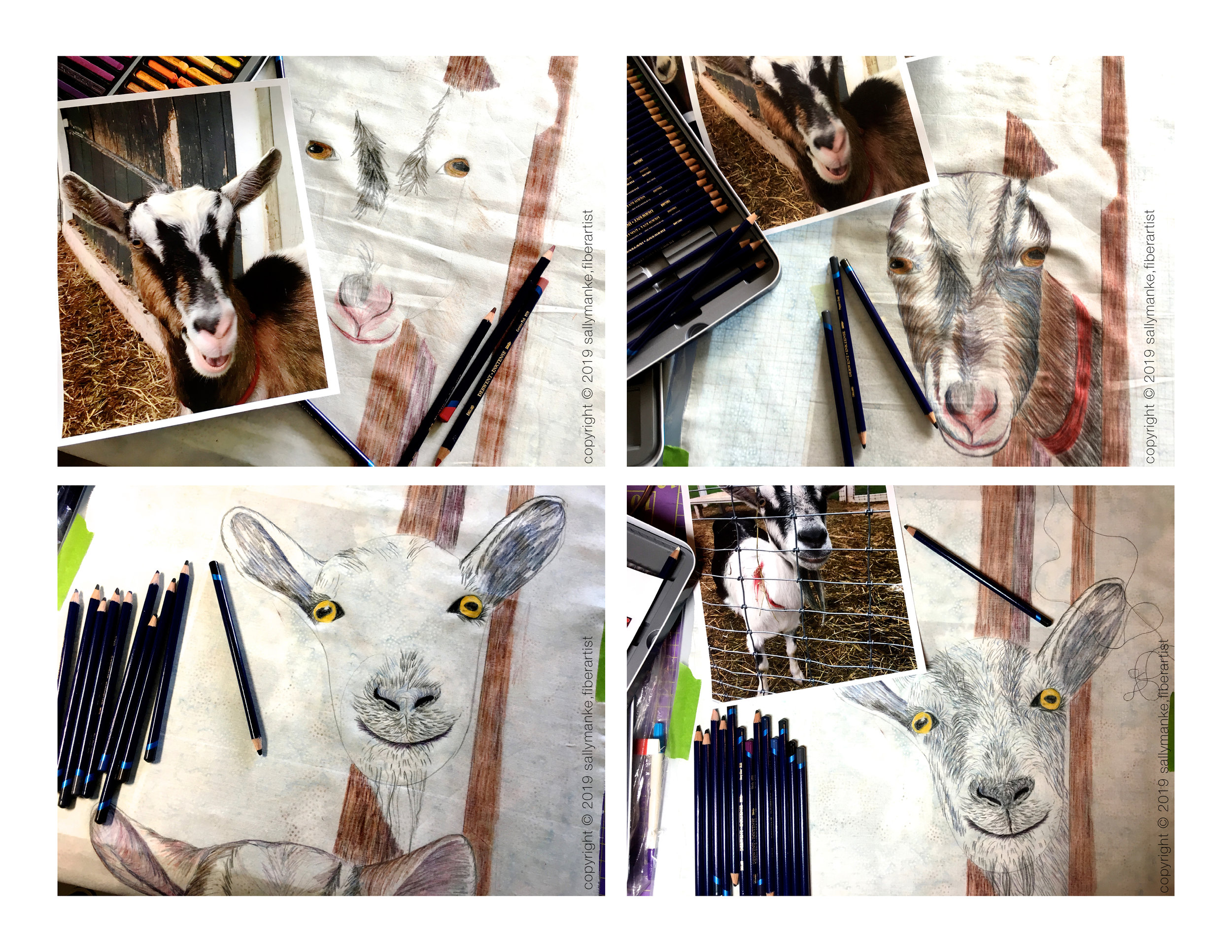 step 2 goat.jpg