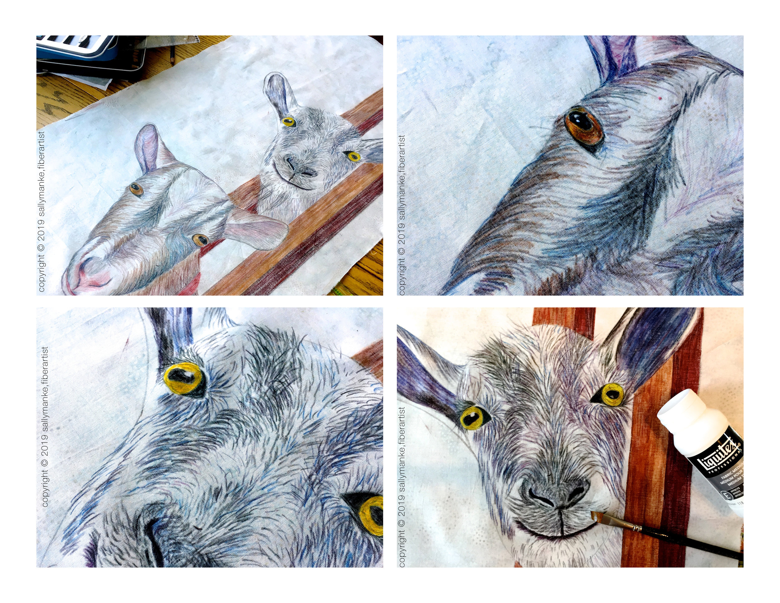 step 3 goat.jpg