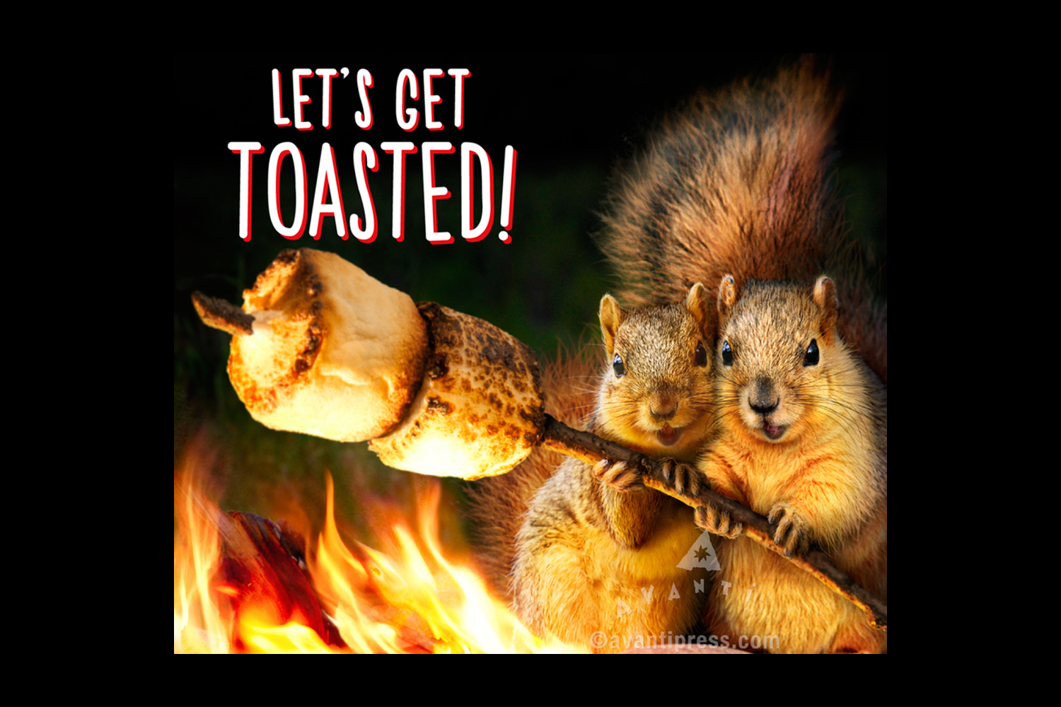 squirrels-roasting-marshmellows.png