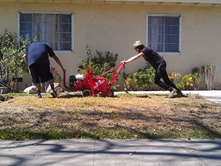 Turf Removal - Water LA always removes turf before implementing strategies.  If grass and weeds are not removed ahead–of–time, they are likely to negatively affect landscapes in the future.