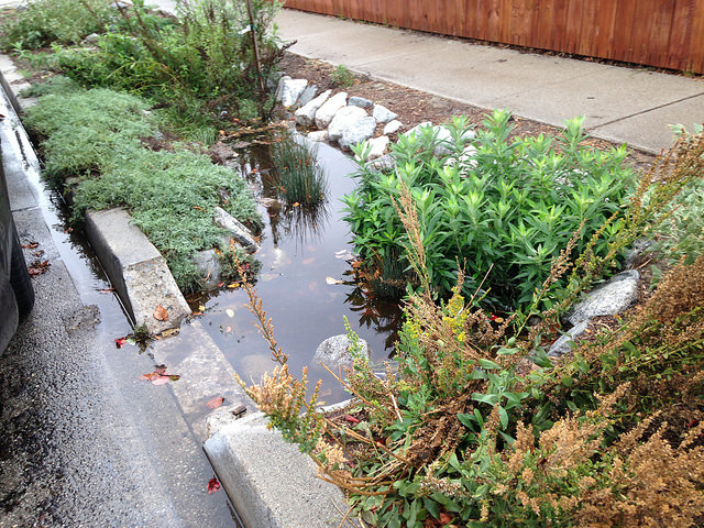Parkway Basins - The strip of earth between the street curb and the sidewalk is called a parkway. Retrofitting a parkway into a vibrant rainwater infiltration basins takes advantage of water that would otherwise be lost and flow straight into the ocean.