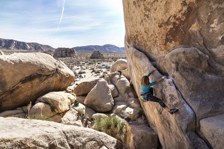 Climbing Bearded Cabbage @ Hidden Valley CG