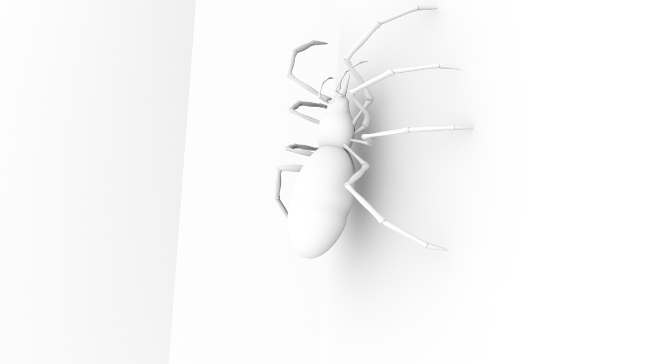 Spider_occ.jpg