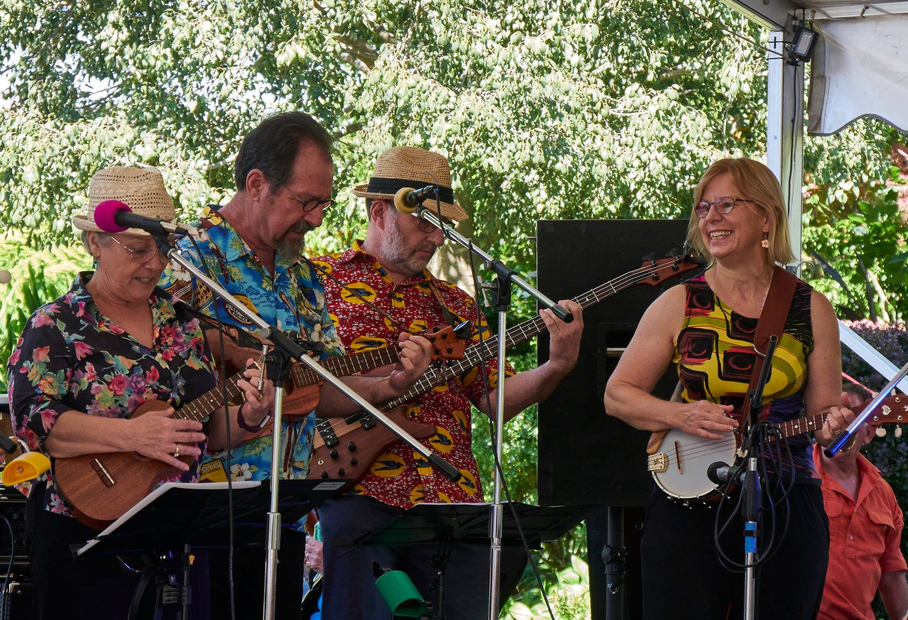 The Ukulele Republlic of Canberra performing at the Blue Mountains Ukulele Festival in February 2018 -