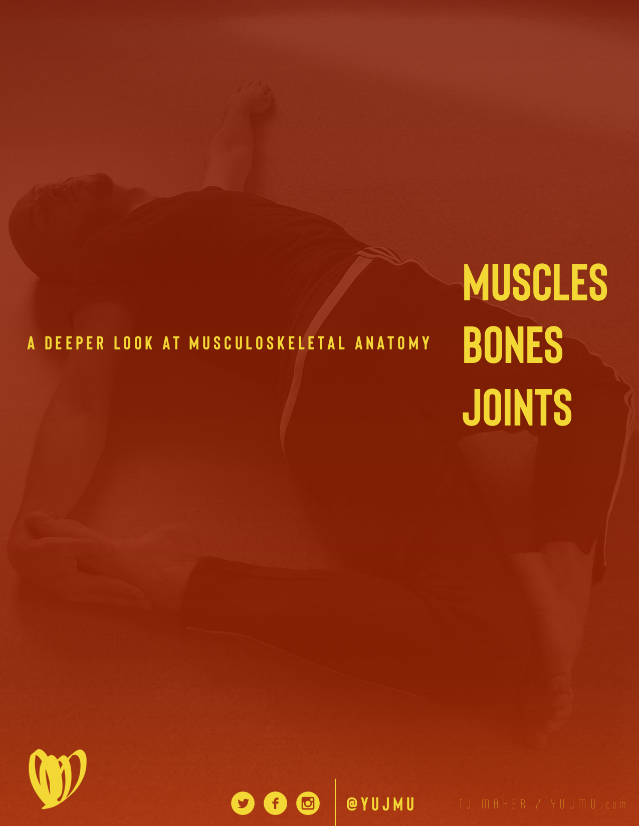 MUSCLES BONES JOINTS Cover.jpg