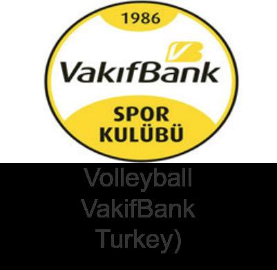 Vakifbank.png