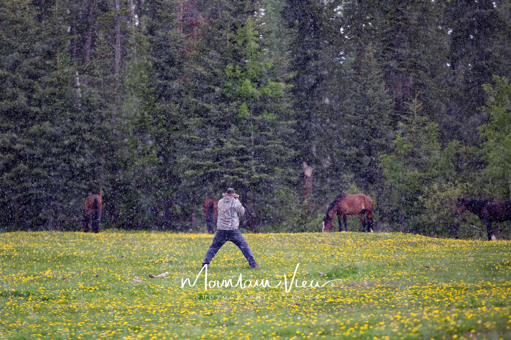Wild Horse Tour June 8-41.jpg