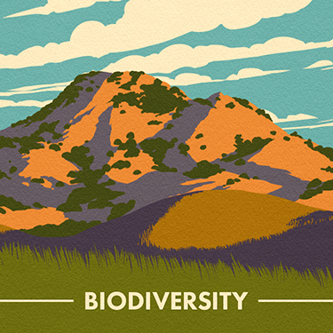 Biodiversity-Card-Back---No-Bleed.png